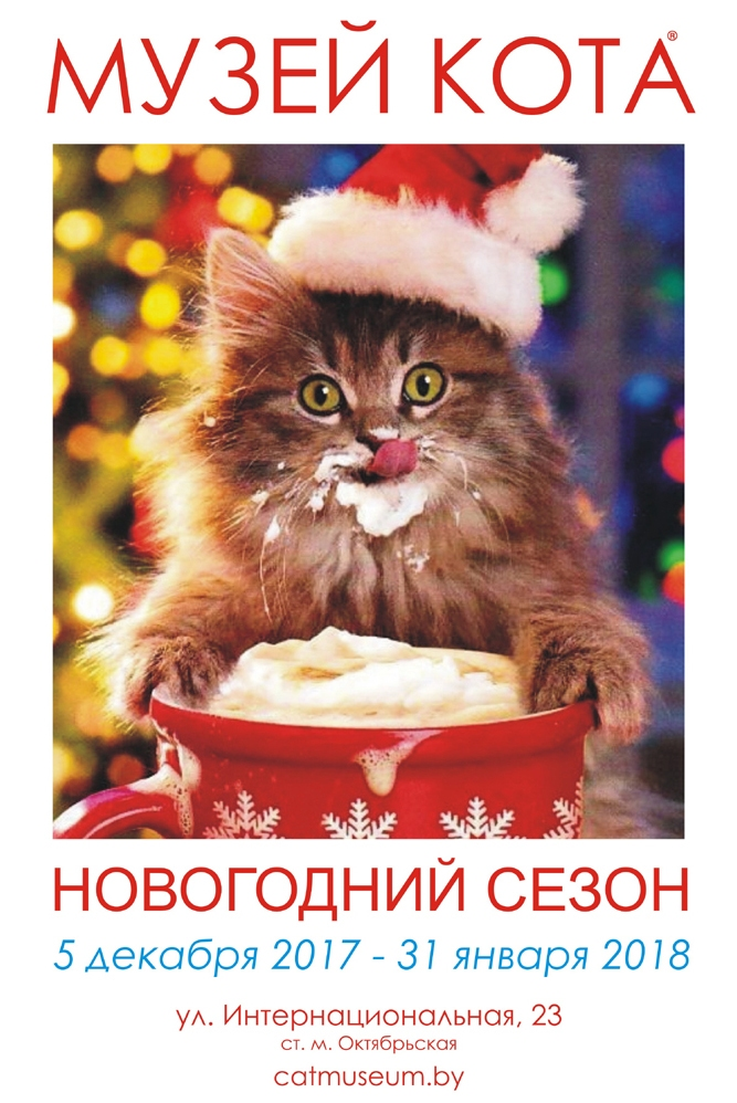 Музей кота новогодний