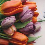 Весенний девичник
