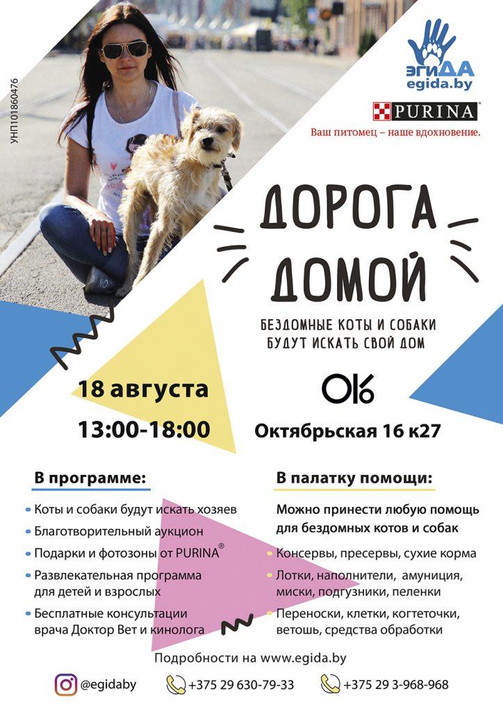 В Минске более 60 бездомных животных найдут свою «Дорогу домой!» 1